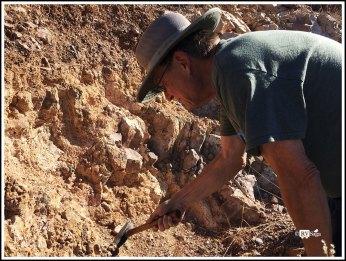 Stephen Digging for Rocks