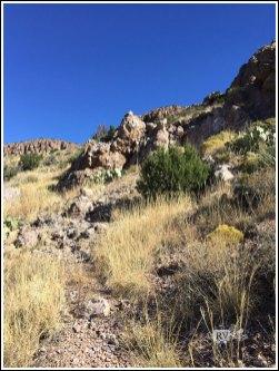 Hiking Towards the White Stripe