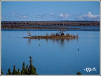 Islet on Sumner Lake