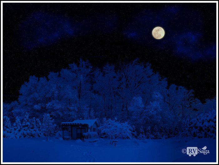 Snowy-Moon-Night