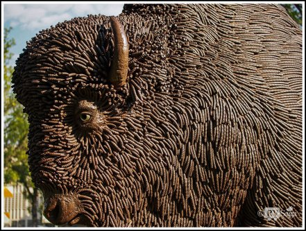 Detail of Statue of Bison