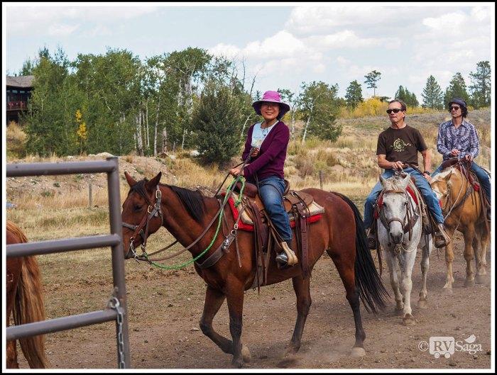 Riding-Horses
