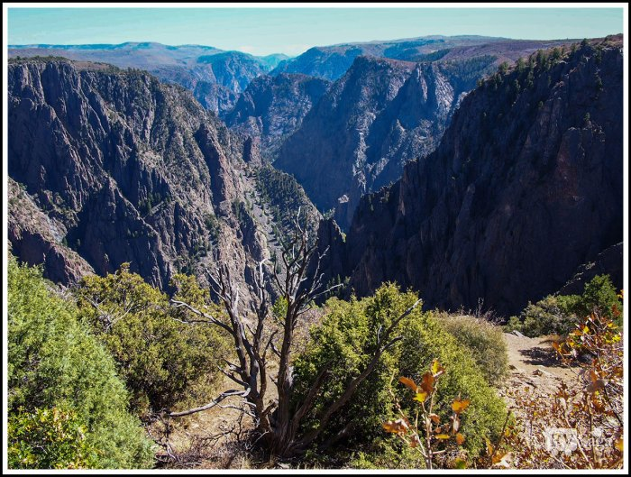 View-of-Black-Canyon-at-Gunnison-Point