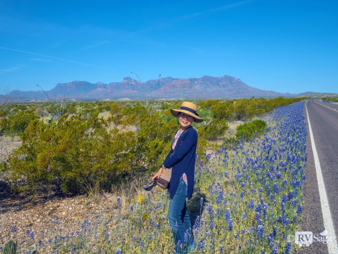 Unexpected Joy in Big Bend National Park