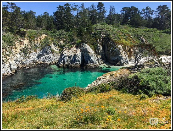 Amazing Point Lobos on Route 1