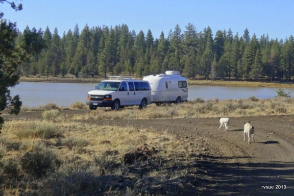 I was pleased to find this pleasant camp by water when traveling through an area with few boondocks.  Unfortunately, the activities of duck hunters drove up out.