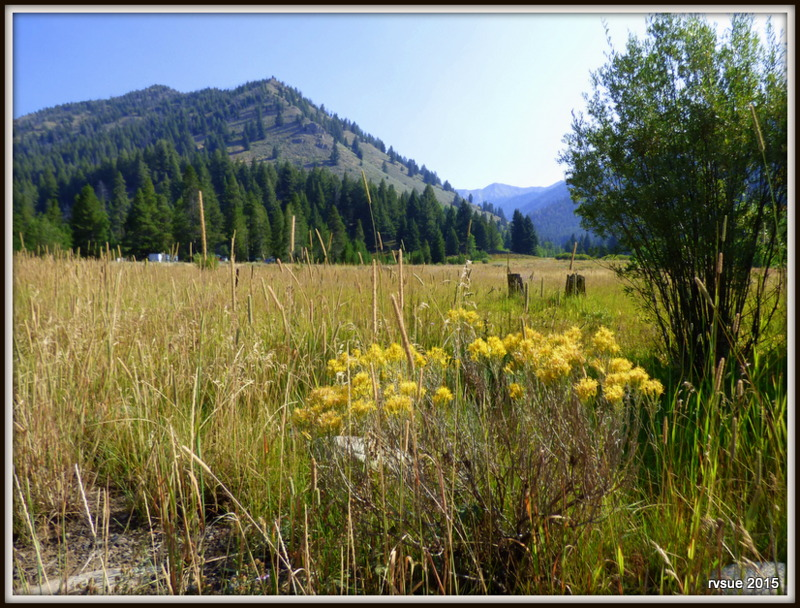 Murdock Campground In Sawtooth National Forest And Bridget