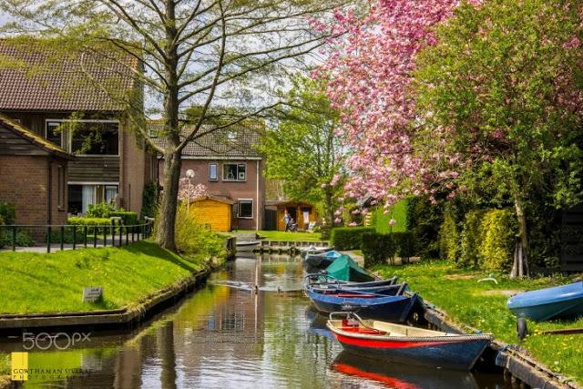 جيثورن، هولندا