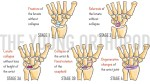 Wrist Joint – Anatomy, Nerve Supply, Functions