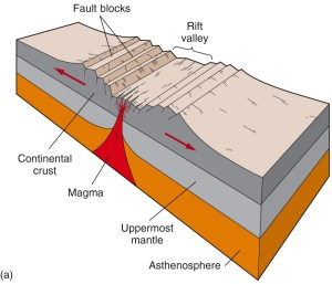 The Red Sea Rift   Seeking Plates