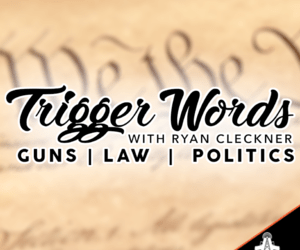 29 – Online Concealed Carry Permits