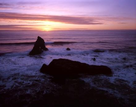 Shoreline Road, Rt 1, Hardy, California - Graflex Crown Graphic 4x5 Press Camera - Film - April 2001