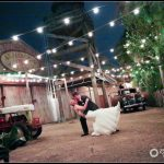 Palm Beach Zoo night photo Wedding Formals