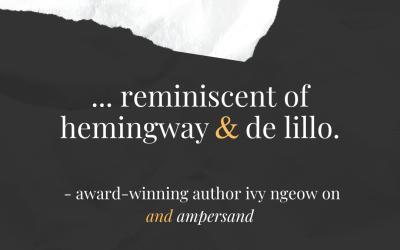 Reminiscent of Hemingway and de Lillo