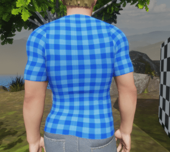 Blue Check T-Shirt Back View 29 Dec 2017