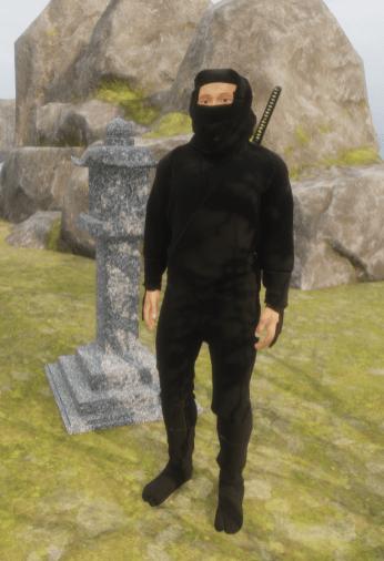 Ninja 1 Ralph Vintorix 30 Mar 2018