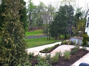The Diviney's winding pathway to the patio.