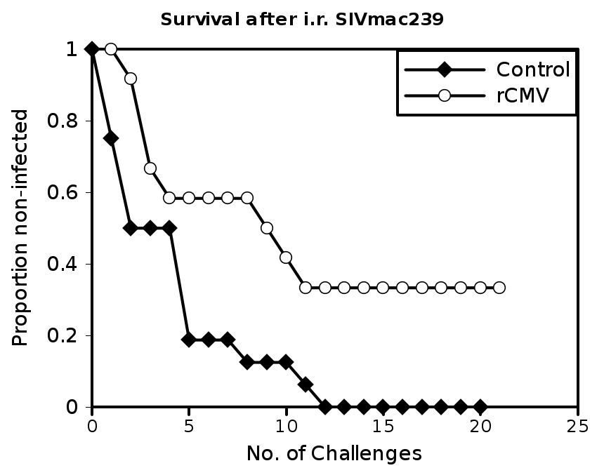 recombinantviruses_032009_html_48846d22