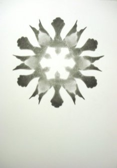 circle-of-birds-800
