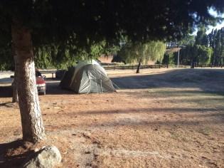 Top 10 camp site, Wanaka