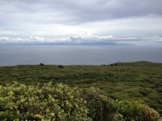 Stewart Island, from Bluff hill