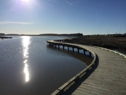 Roger Sutton Boardwalk finally reopened after flood damage