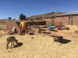 Students working on the animal shelter in the camp at lake Titicaca