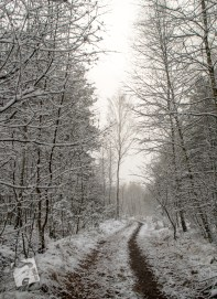 grabicz-zima-1-14