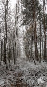grabicz-zima-1-9