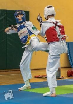 karate-kyokushin-9137