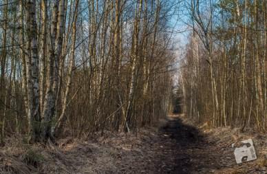 grabicz-w-marcu-1846