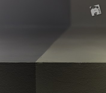 gray-6571