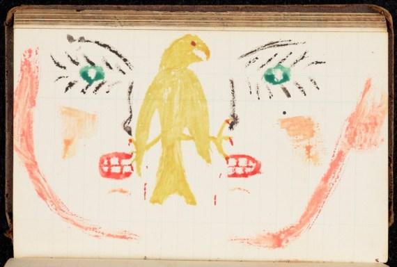 bird-nose.jpg