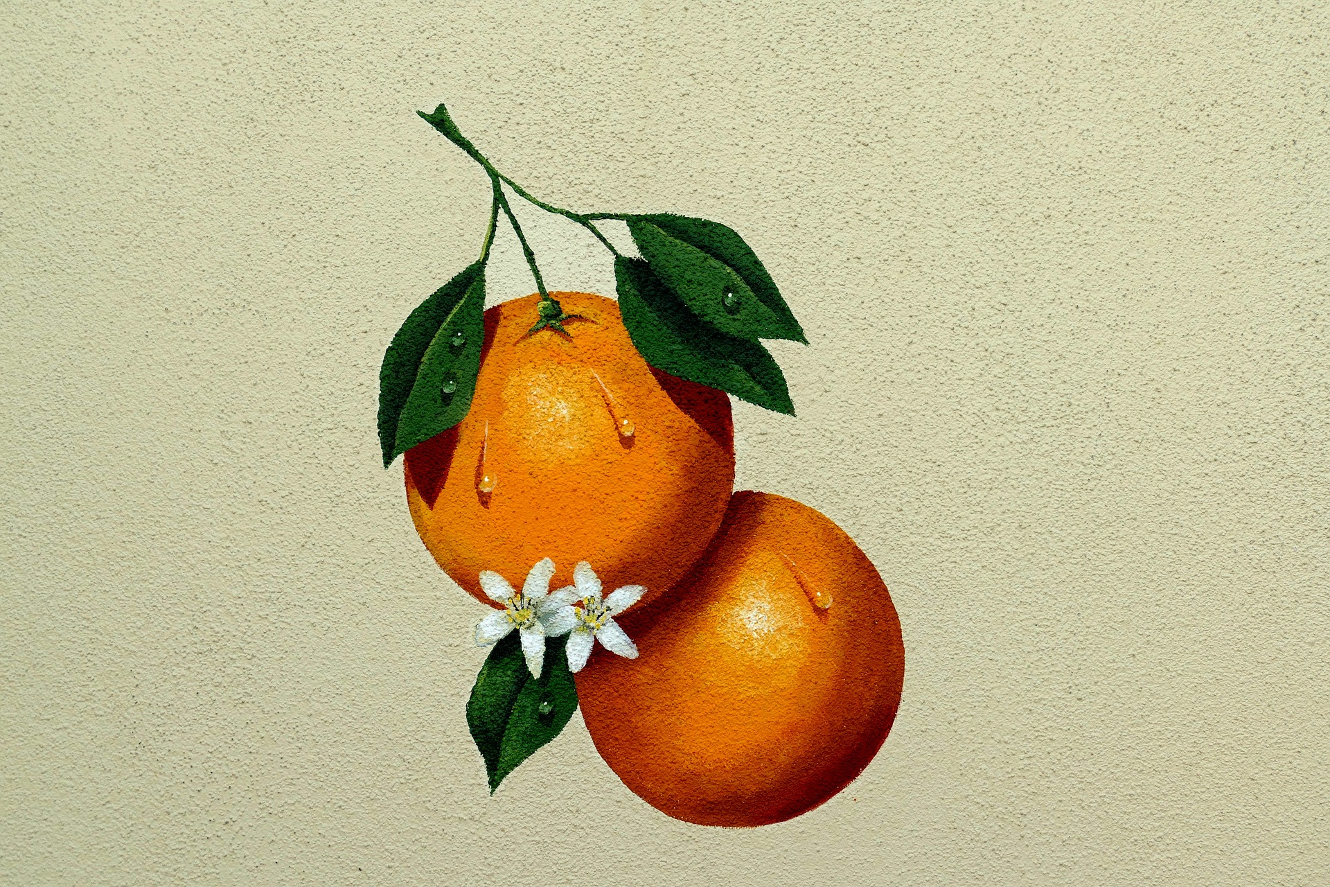 A painting of a tangerine