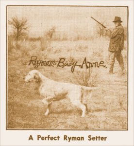 What is a Ryman-type Setter