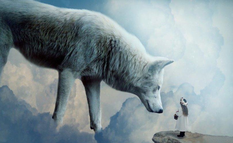 spiritual solutions wolf
