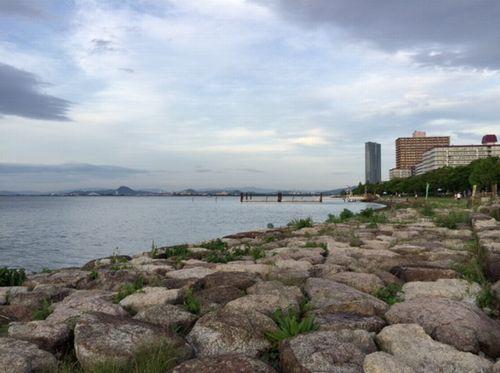 琵琶湖なぎさ公園湖岸