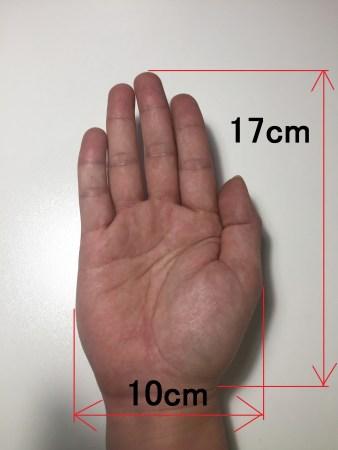手 大きさ