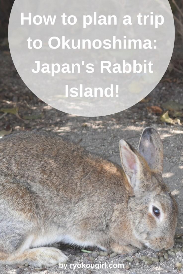 How to plan a trip to Okunoshima; Japan's rabbit island!