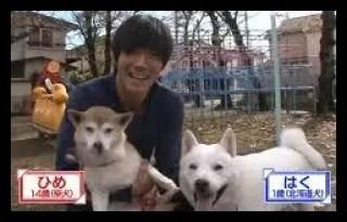 中島翔哉,プロサッカー選手,愛犬