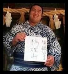 栃煌山,相撲