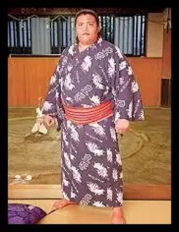 御嶽海,相撲,力士