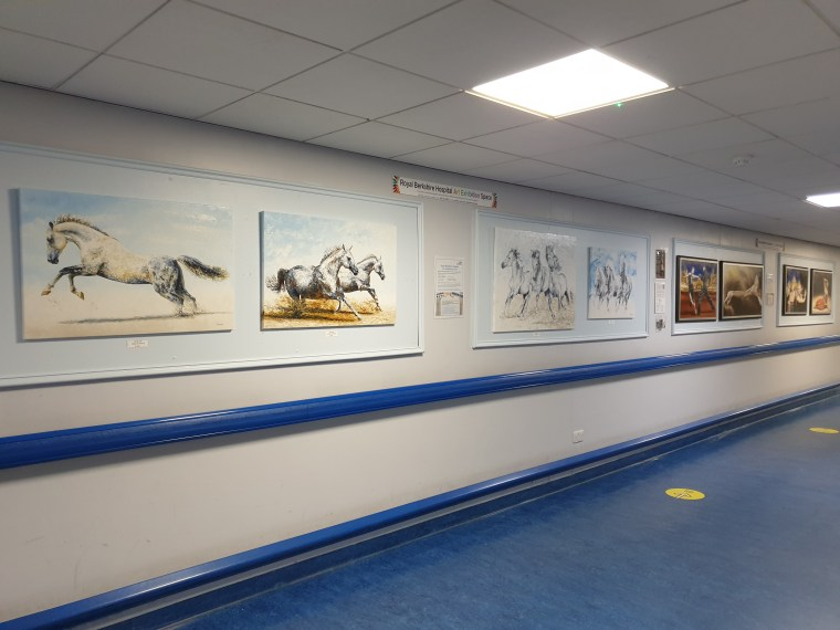 2020: Royal Berkshire Hospital in Reading, NHS Charity Exhibition