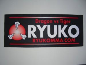 RYUKO MMA