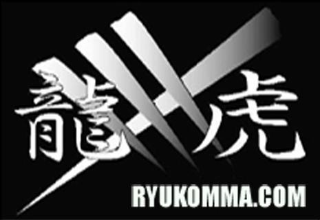 龍虎 MMA ブログ