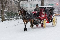 NYC_Snowstorm_Central_Park-10