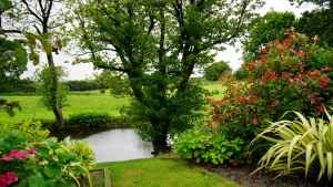 Landscaping Pond Creation Cornwall