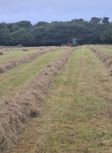 Hay Bailing Agricultural Services Cornwall
