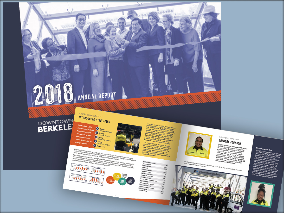 Berkeley Annual Report Design