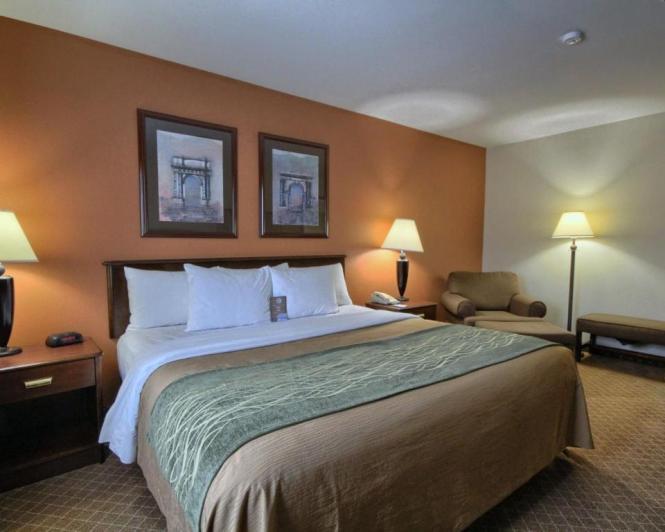 Comfort Inn Okemos East Lansing Usa Deals